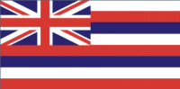Hawaii flag 90 x 150 cm