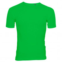Uni Fashion T-shirt forårsgrøn (spring green)