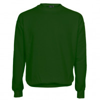 Atlanta Sweatshirt flaskegrøn (bottle green)