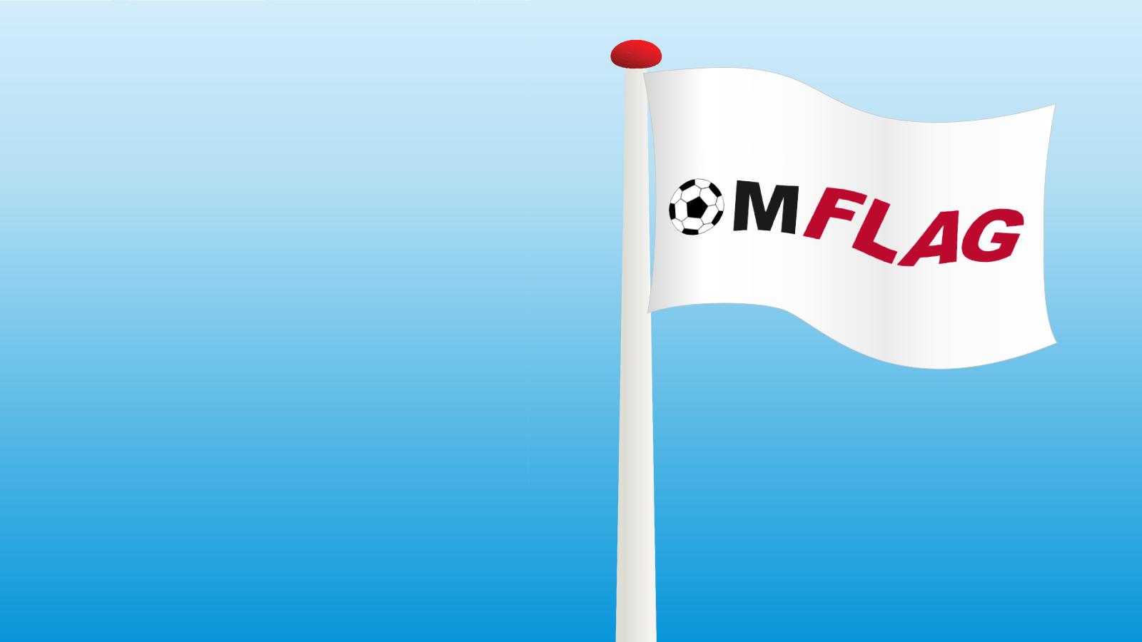 Lækker Dannebrog, nationalflag, vimpler og standere, køb flag nu! UH-89